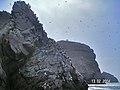 Islas Ballestas - panoramio (2).jpg