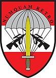 Jagdkommando Truppenabzeichen.jpg