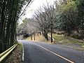 Japan National Route 500 in Ochiai, Soeda, Tagawa, Fukuoka 4.jpg