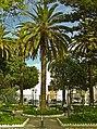 Jardim dos Amuados - Loulé - Portugal (4405590813).jpg