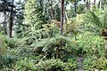 Jardin Feteira Rainha Sintra 11.jpg