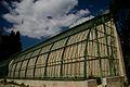 Jardin des plantes VII.jpg
