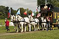 Jean Luc Bacle (Sarthe) en diligence mondial du cheval percheron 2011 Cl J Weber03 (23715665829).jpg