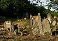 Jewish cemetery Otwock Karczew Anielin IMGP6809.jpg