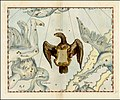 Johannes Hevelius - Lyra.jpg