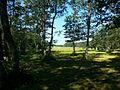 Jungfruskär Pargas meadows 2.jpg