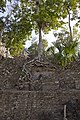 Jungle covered ruin Coba 3 (4374530956).jpg