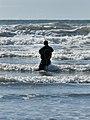 KIC4728 Surf Perch Fishing Kalaloch Beach Olympic NP Washington (22958387042).jpg