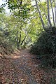 Kattoudhia-Mylikouri Nature Trail - panoramio (6).jpg