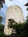 Kazimierz Dolny,ruiny zamku - panoramio - Mietek Ł (3).jpg
