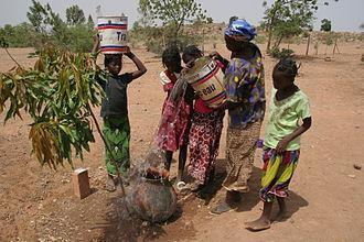 Centre-Est Region - Mango farmers