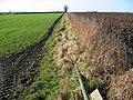 Kirkburn Farmland - geograph.org.uk - 110606.jpg