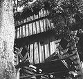 Kozolec toplar, detajl, Velike Lipljene 1964.jpg
