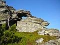 Kráľova skala, okno - panoramio.jpg
