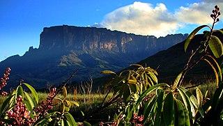 Guayana natural region Geographic/Natural Region in Amazonas, Venezuela