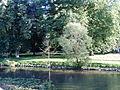 Kurpark an der Saale-Juni2007.JPG