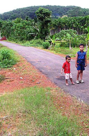 Kuttiyeri - Hanging Bridge road