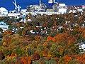 Lévis - Chantier Davie Canada Inc. - panoramio.jpg