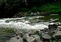 Laborec River - panoramio.jpg