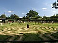 Labyrinth at Tulleys Farm - geograph.org.uk - 541058.jpg