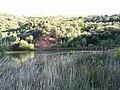 Lago del Encinal Castropodame.jpg