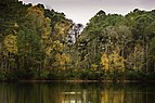 Lake Ballard at Hoffler Creek 1 LR.jpg
