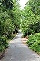 Lakeshore Drive - panoramio (1).jpg