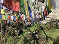 Lama flags.jpg
