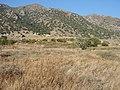 Land for sale - panoramio - Kostas.jpg