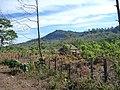 Landscape 001 - panoramio (1).jpg