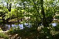 Landschaftsschutzgebiet Gütersloh - Isselhorst - An der Lutter (18).jpg