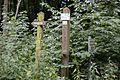 Landschaftsschutzgebiet Solling – Lunau-Tal bei Hardegsen - An der alten Uslarer Straße (3).jpg