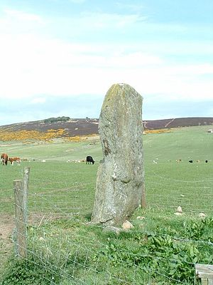 Lang Stane of Auquhollie - The Lang Stane