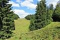 Les Fruitières de Nyon - panoramio (12).jpg