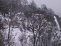 Letenské sady - panoramio (197).jpg