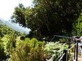 Levada 25 Fontes, Madeira, Portugal, June-July 2011 - panoramio (17).jpg