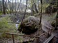 Lielais Gaujas akmens 2004-10-17.jpg