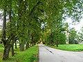 Liepu aleja (1) - panoramio.jpg