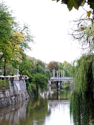 Cobblers' Bridge - Cobblers' Bridge as seen from Ljubljanica embankments