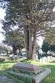 Llanbadarn Fawr Eglwys Sant Padarn St Padarn's Church, Ceredigion, Wales. 14.jpg