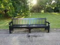 Long shot of the bench (OpenBenches 1174).jpg