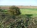 Looking across Bourne North Fen (geograph 2632523).jpg