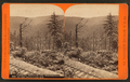 Looking through the wilderness, on the Bell's Gap R. R, by R. A. Bonine 2.png