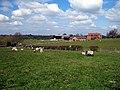 Lower Dean Farm - geograph.org.uk - 395236.jpg
