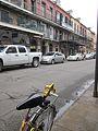 Lower Decatur St NOLA Mch 2012 Bike Fleur.jpg
