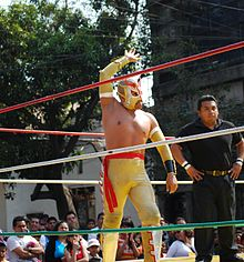 Color picture of a masked professional wrestler posting in the ring during an outdoor wrestling event.
