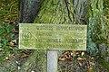 MOs810, WG 2014 39, Milicz Ponds Postolin arboretum (4).JPG