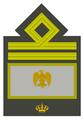 MVSN-Luogotenente generale capo di manipolo.png