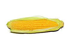 Maize - Corn.jpg