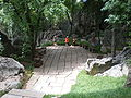 Major Stone Forest SW section 02.JPG